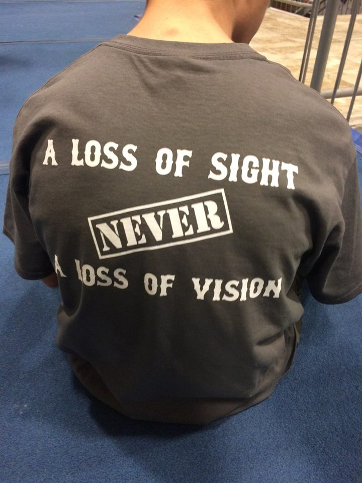 loss of sight is not loss of vision