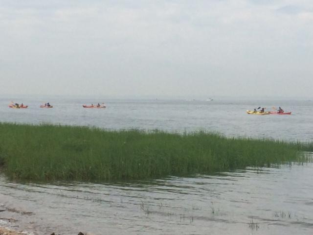 KayakDay
